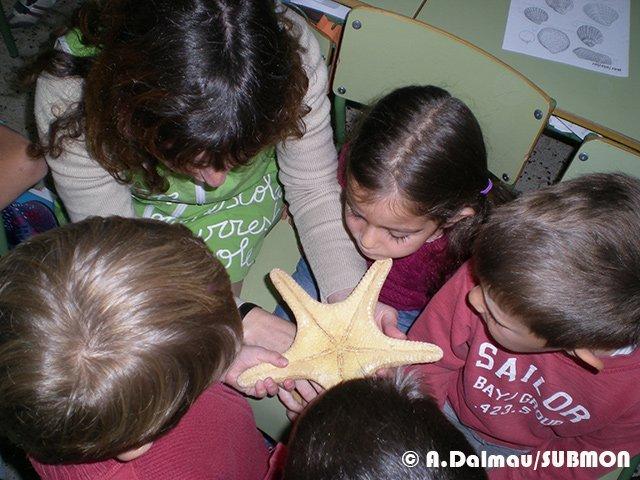 Mostrando-a-los-escolares-una-estrella-de-mar